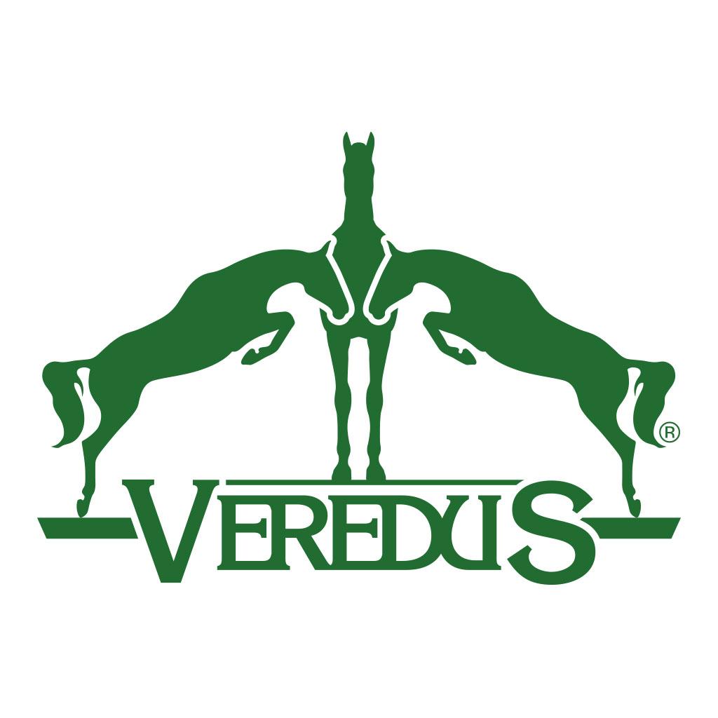 AdOpera, studio pubblicitario, comunicazione, immagine. Logo, naming, brand identity: VEREDUS